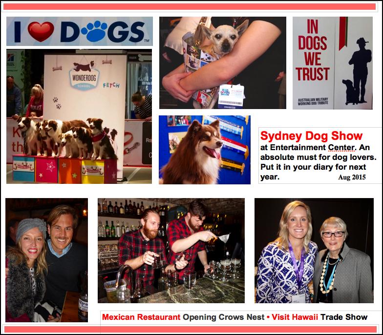 SSD Aug 2015  Dog Show